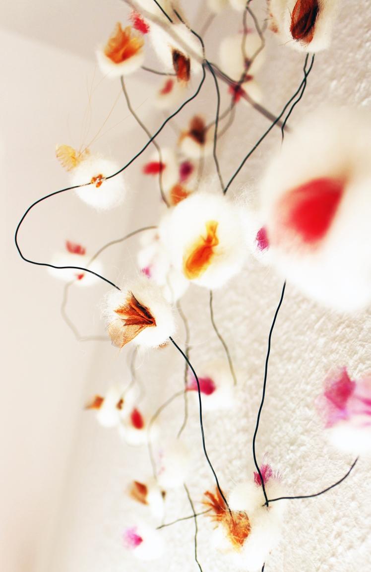 My appletree in bloom
